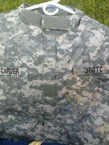 Carver ACU
