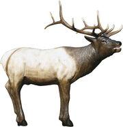 Hd70 elk