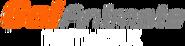 Go!Animate Network (2016,present)