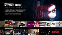 Netflix - English