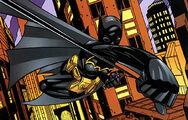 BatgirlIIIh29