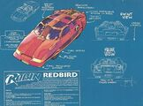 Robin's redbird