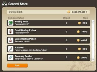 General Store Main Page
