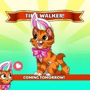 Curio Timewalker
