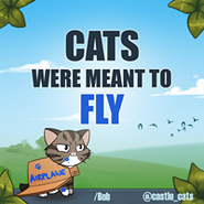 Cats were meant to fly(Bob)