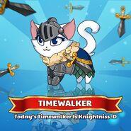 Knightniss Timewalker