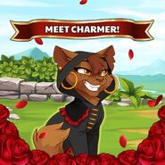 Charmer promo