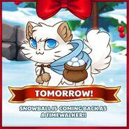 Snowball Timewalker