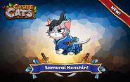 Kenshin Official Image