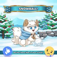 Snowball Official Image