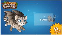 Loki Charity