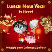 Lunar New Year 2019 Shen Xiao Hui Chi