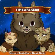 Silver Timewalker