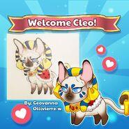 Cleo Intro