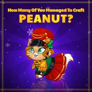 Peanut Official Image