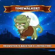 Meowstein Timewalker