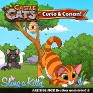 Conan and Curio Siblings SaK Official Image