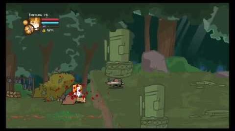 Castle Crashers - Headless Thief Glitch