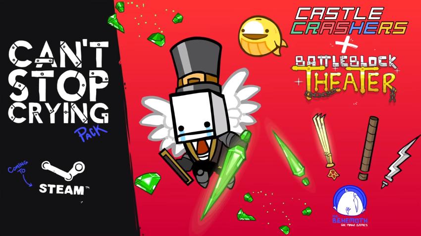 Cardboard Tube | Castle Crashers Wiki | Fandom | 477x850