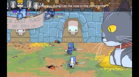 Castle Crashers Testing Lab - Ninja's Melee