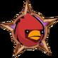 Cardinal Snapshot!