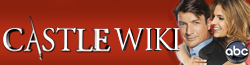 Castle Wiki wordmark-newred