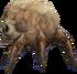 Skull Crab DXC