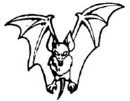 BL Vampire Bat