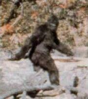 Bigfoot - 01