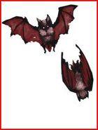 OoS Twin Bats