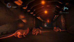 Plauge of Rats group shot