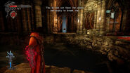 Castlevania Lords of Shadow 2 item far away