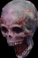 Flying Skull DXC