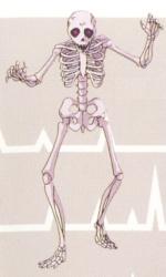 RoB Skeleton