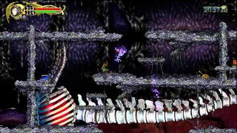 Castlevania Harmony of Despair - Secret Item 3