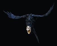 FlyingScaven