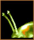 Castlevania-DoS-Mollusca
