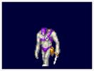 Castlevania-AoS-Descuartizador