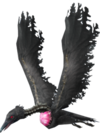 Crow Transparent
