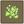 Zauber-Glühwürmchen