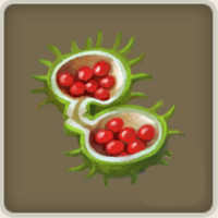 Löwenmäulchen-Samen