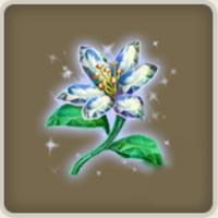 Leuchtlilie