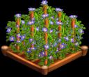 Flax 02