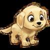 Dog 01 Set 01 Icon