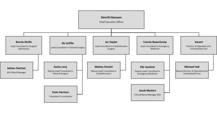 Holby City Hospital Organisation Chart