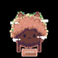 Winda button