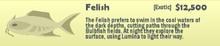 Felish