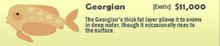 Georgian