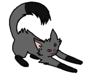 Сумрак котенок