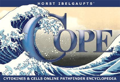 Fitxer:Cope17-5.jpg